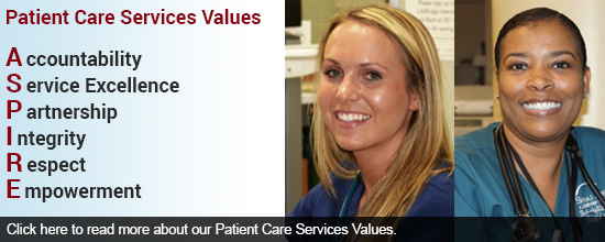 Patient Care Services Values
