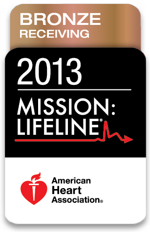 2013 Mission LifeLines Bronze Award