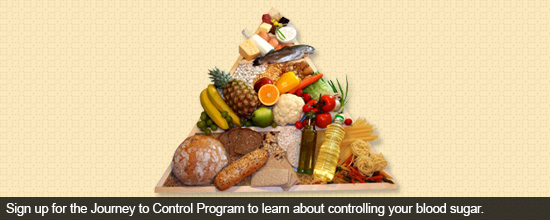Sign up for the Journey to Control Program to learn about controlling your blood sugar.