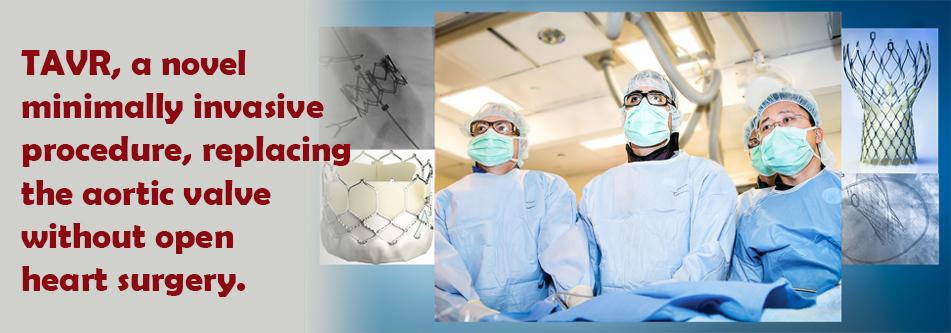 Cardiovascular Associates of Maryland - Best Cardiologists in MD