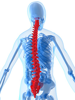 Spine Metatsases