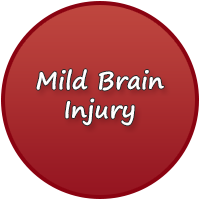 Mild Brain Injury