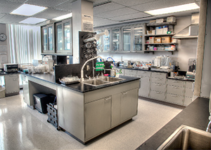 Sinai Hospital Central Research Lab
